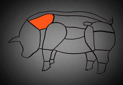 Schwein-Kamm-skalliert2